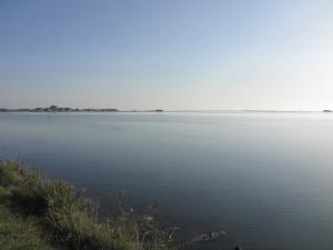 261) Laguna di Grado - Grado West