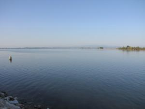 264) Laguna di Grado - Nordost mit Alpenvorland