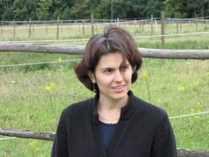 2009 10 Henning