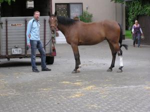 2009 26 Rainer