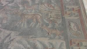 013 12-111 Mosaik in der Villa Romana del Tellaro 1